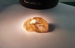 Đào được viên kim cương thô màu vàng hàng trăm triệu năm tuổi, lớn nhất ở Nga